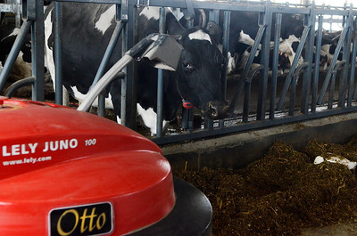 Erica Miller @togianphotog - The Saratogian:  Farmers were welcomed to the O.A. Borden and Sons Farm in Easton to see their state of the art automated milking system dairy barn. The event was sponsored by the Lely Center, of Albany, Hos-Cot Builders and Cornell Cooperative Extension.This Lely Juno is an automatic feed pusher, to keep their isles clean of food.