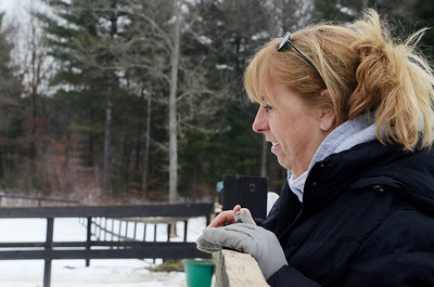 Erica Miller @togianphotog - The Saratogian,    At Cabin Creek on Friday afternoon, Jan. 31 2014, Joann Pepper watches one of their 15 horses. Cabin Creek is a part of the Old Friends organization for saving retired race horses,