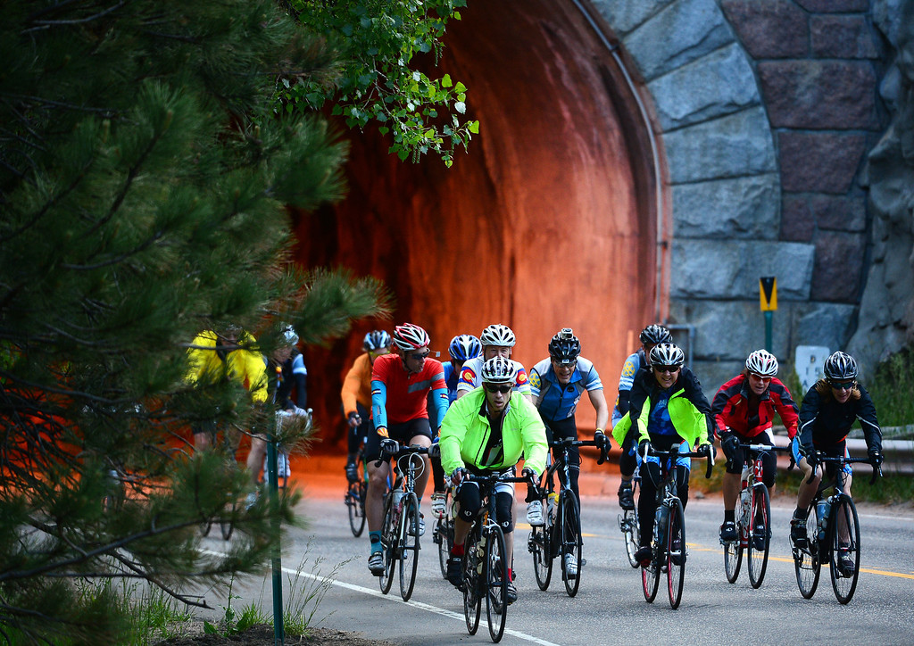 . Cyclists make their way up Boulder Canyon near Boulder, CO, on June 8, 2014. More than 2,000 cyclists are taking part in the annual ride.(Photo By Helen H. Richardson/ The Denver Post)