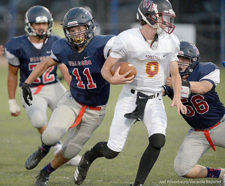 . Vaca Christian High\'s Hawkin West (11) and Zach Mercado track down Foresthill High quarterback, Kaiden Pennington during the first quarter of the Falcons 41-10 rout of the Wildfires Friday at Falcon Field.