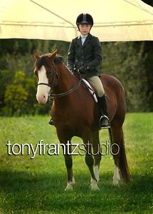 equine22