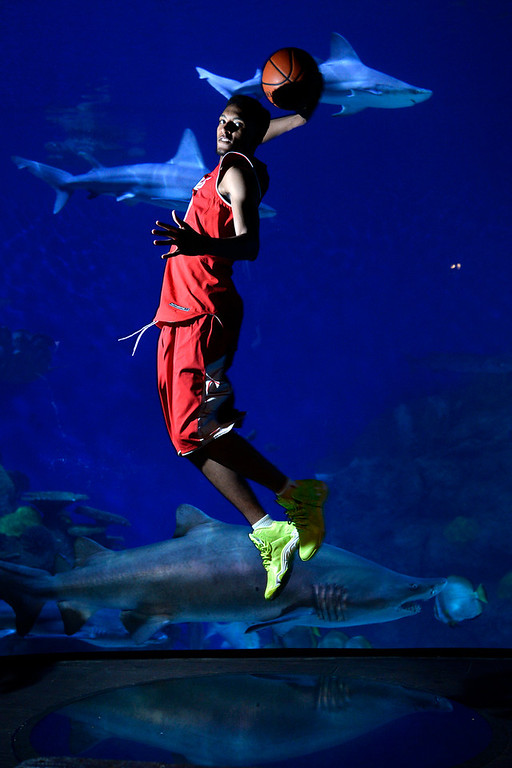 . DENVER, CO - APRIL 02: East High School\'s Dominique Collier poses for a portrait. All-state boys and girls basketball portraits at the Downtown Aquarium on Wednesday, April 2, 2014. (Photo by AAron Ontiveroz/The Denver Post)
