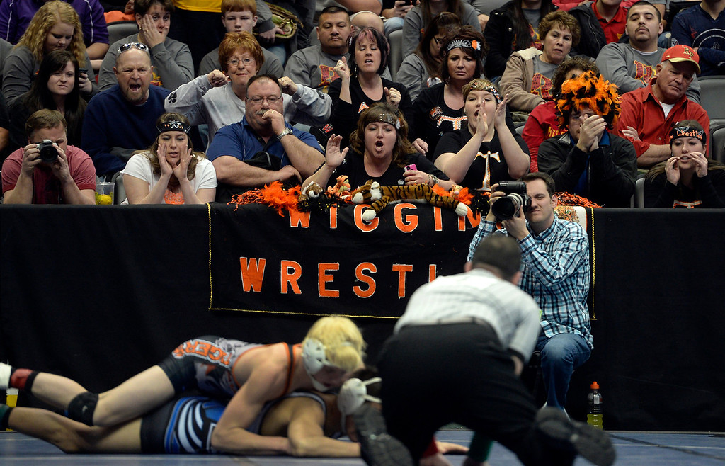 . DENVER, CO - FEBRUARY 21: Wiggins fans cheer on their 2A competitors. The Colorado Wresting State Championships take place at the Pepsi Center with the quarterfinals taking place on Friday, Feb. 21, 2014. (Photo by Kathryn Scott Osler/The Denver Post)