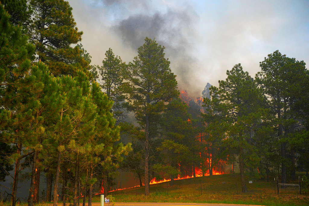 . COLORADO SPRINGS, CO - JUNE 13: A fire burns on Vollmer Road as the Black Forest fire burns east of Colorado Springs. (Photo by AAron Ontiveroz/The Denver Post)