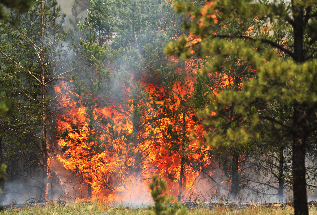 . COLORADO SPRINGS, CO. - June 13: Fire site near Black Forest section 16 trailhead. Colorado Springs, Colorado. June 13, 2013. The Black Forest fire has already destroyed at least 360 homes and consumed 15,000 acres. (Photo By Hyoung Chang/The Denver Post)