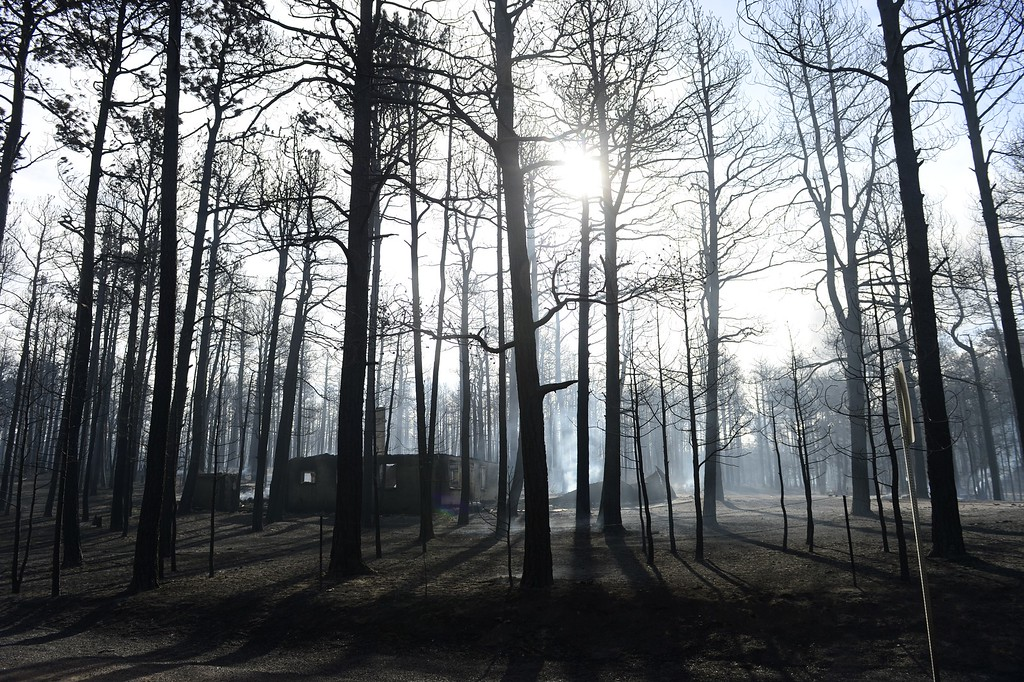 . COLORADO SPRINGS, CO - JUNE 12: A home that was burned in the Black Forest Fire smolders in the early morning sun on Herring Road. Many homes and structures were burned in the area. (Photo by AAron Ontiveroz/The Denver Post