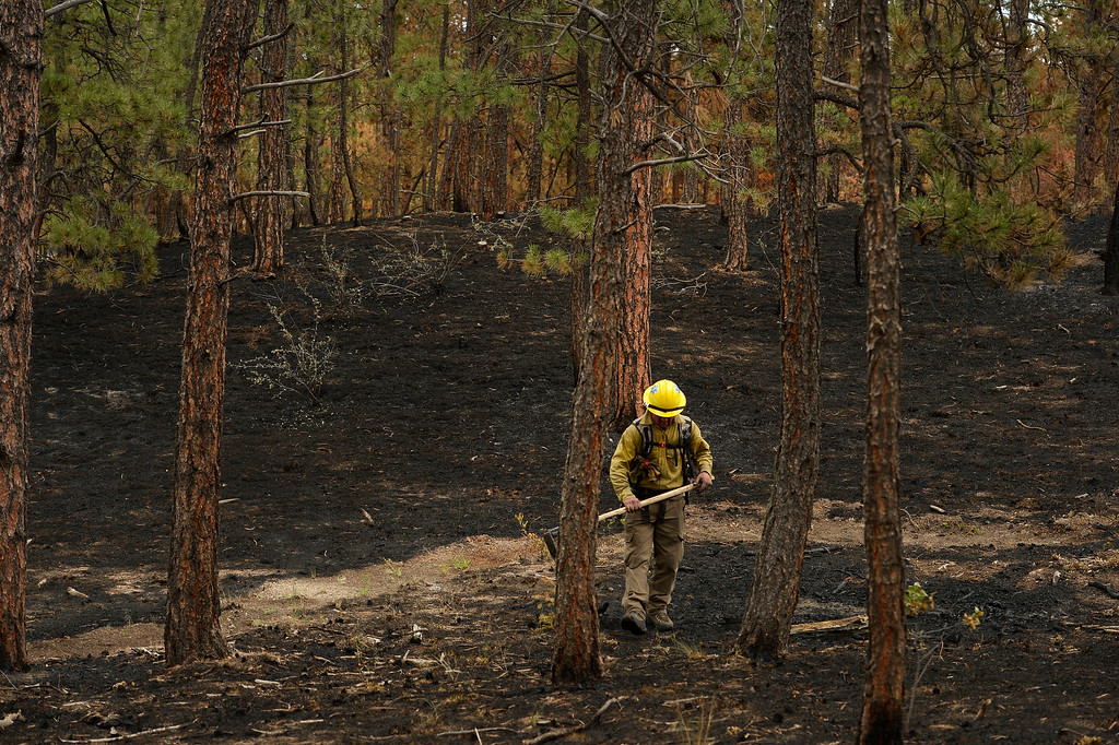 . BLACK FOREST, CO - JUNE 17:   A firefighter with Hanogver Fire Department , who is covered in soot, looks for any kind of hotspots on properties inside of the Black Fire fire zone in Black Forest, CO on June 17, 2013.  The fire is now 75% contained and recent rains are helping firefighters. Photo by Helen H. Richardson/The Denver Post)