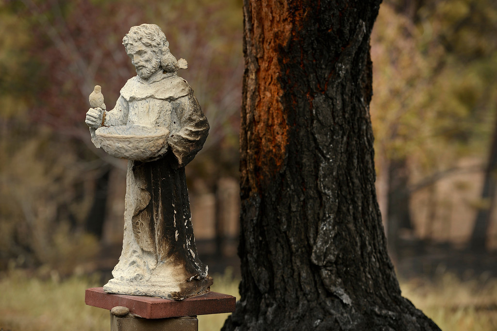 . BLACK FOREST, CO - JUNE 17:  A lovely statue is partially burned next to a tree inside the Black Forest Fire on June 16, 2013.  Photo by Helen H. Richardson/The Denver Post)