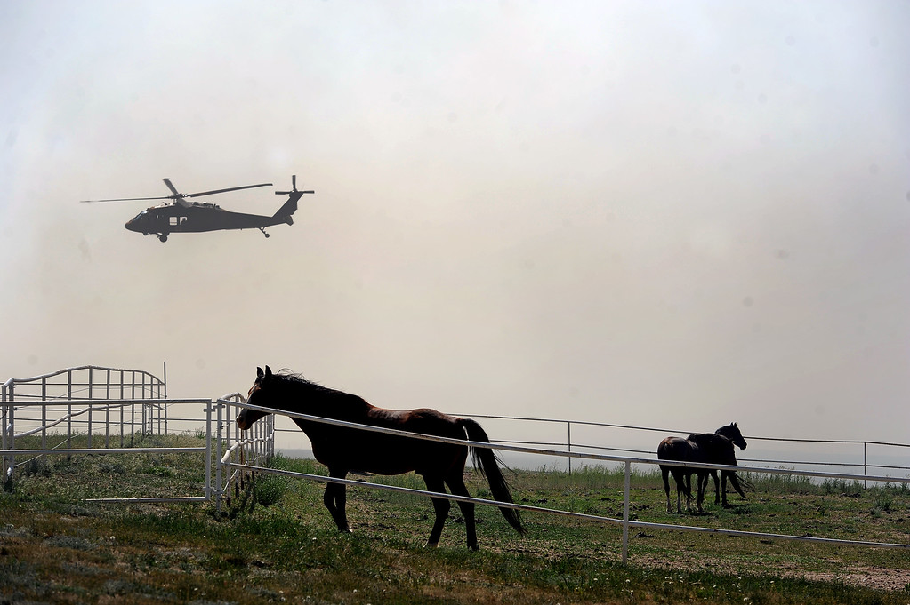 . COLORADO SPRINGS, CO - JUNE 12: Anxious horses pace in their pen as their owner work aggressively to create a fire line around their ranch just off of Black Forest Road to save it from the Black Forest Fire in the Black Forest on June 12, 2013.   Photo by Helen H. Richardson/The Denver Post)