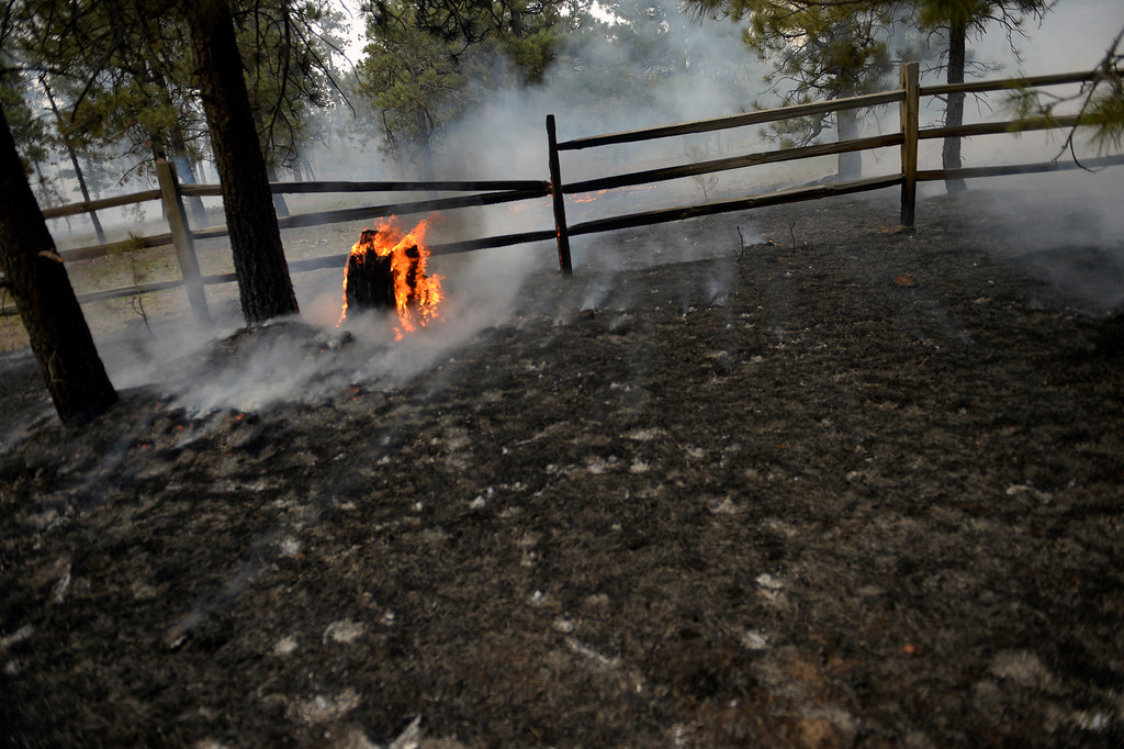 . BLACK FOREST, CO - JUNE 13:  A burnt fence and tree smolder in the midst of the Black Forest Fire on June 13, 2013.  Photo by Helen H. Richardson/The Denver Post)