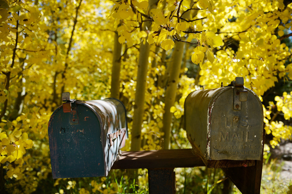 . ALLENSPARK, CO - SEPTEMBER 28: A pair of mailboxes with aspen trees showing off their fall colors along Cabin Creek Rd. near highway 7  Saturday morning, September 28, 2103. (Photo By Andy Cross/The Denver Post)