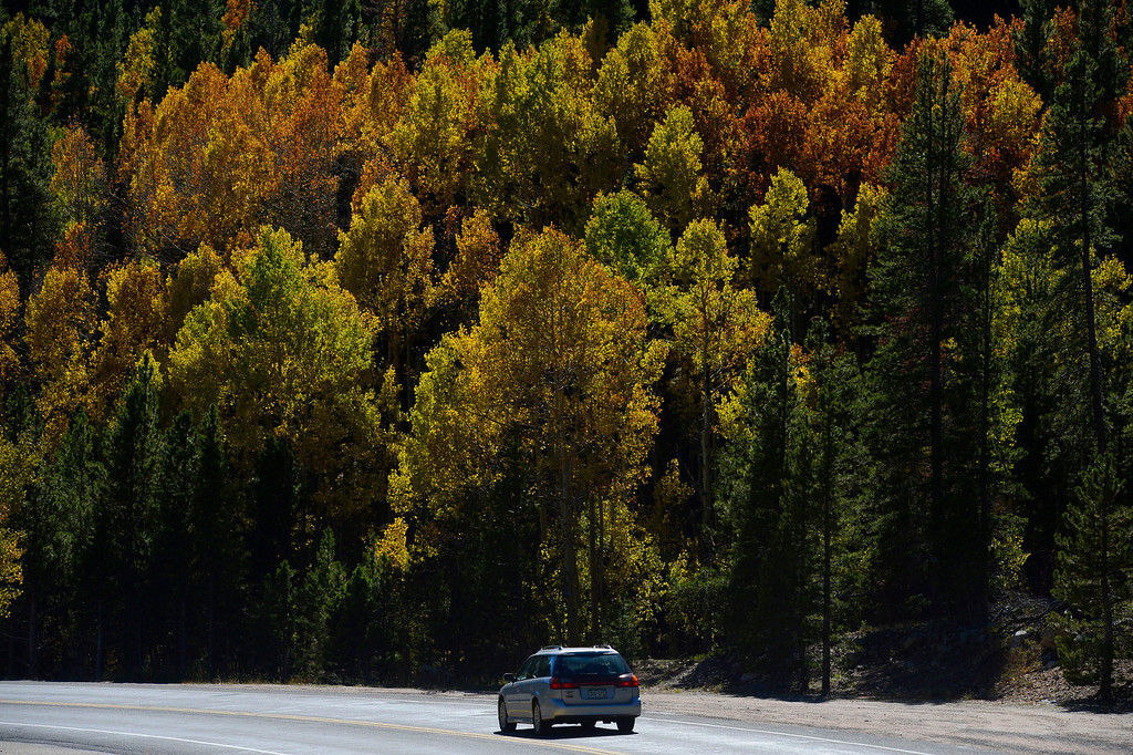 . WARD, CO - SEPTEMBER 28:  A car makes it\'s way down the Peak to Peak highway near Ward Colorado Saturday morning, September 28, 2103. (Photo By Andy Cross/The Denver Post)