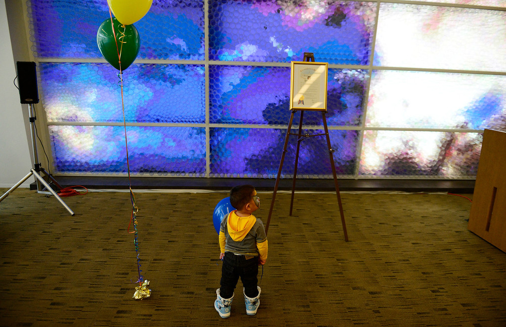 . Adam Fernandez, 18 months, plays with balloons during Denver Adoption Day, November 22, 2013. Adam and two other siblings are being adopted. (Photo by RJ Sangosti/The Denver Post)