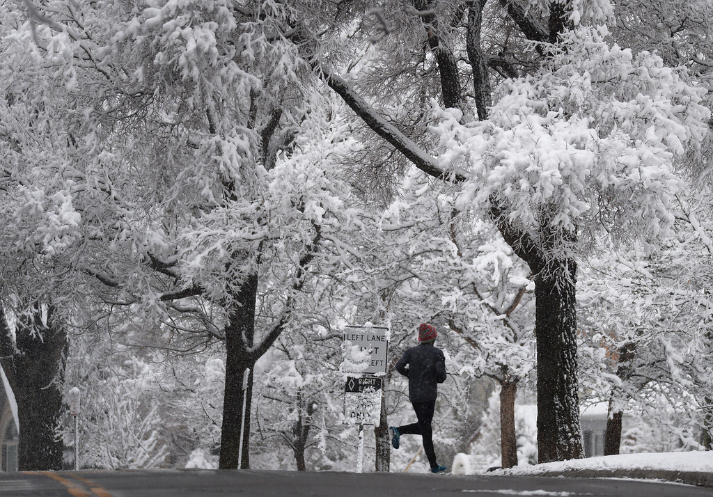 . A jogger in snow covered Washington Park. Denver was doused with a wet, April snow storm overnight, with more expected to fall on Thursday, April 03, 2014. (Photo by Hyoung Chang/The Denver Post)