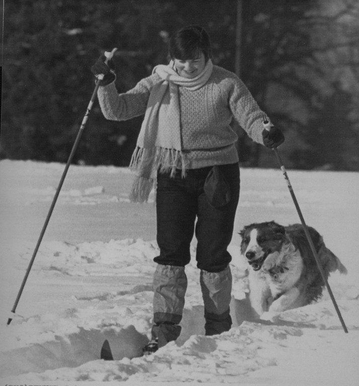 . Afternoon Glide -- Denverite Abby Marsh and her dog, Sheba,  took advantage of Wednesday\'s sunshine going for a cross - country ski outing in Denver\'s Cheeseman Park. 1982 Credit: AP Laserphoto. Denver Post Library Archive