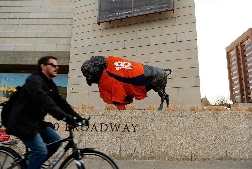 . A man rides past the History Colorado Center where they put a Peyton Manning jersey on a bronze sculpture of a bison outside the museum in Denver, January, 10 2014. The Denver Broncos will take on the San Diego Chargers in the second round of the NFL playoffs on Sunday at Sports Authority Field at Mile High in Denver. (Photo by RJ Sangosti/The Denver Post)