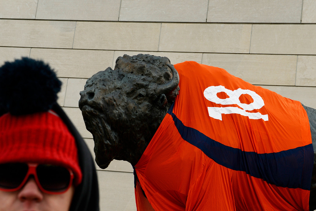. Scott Lee stands outside the History Colorado Center where they put a Peyton Manning jersey on a bronze sculpture of a bison outside the museum in Denver, January, 10 2014. The Denver Broncos will take on the San Diego Chargers in the second round of the NFL playoffs on Sunday at Sports Authority Field at Mile High in Denver. (Photo by RJ Sangosti/The Denver Post)