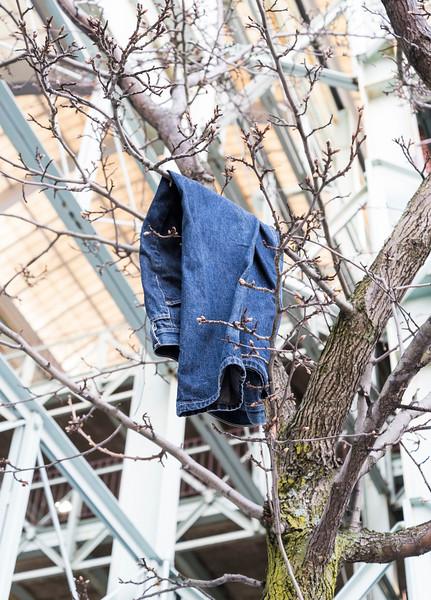Lynn hanging pants