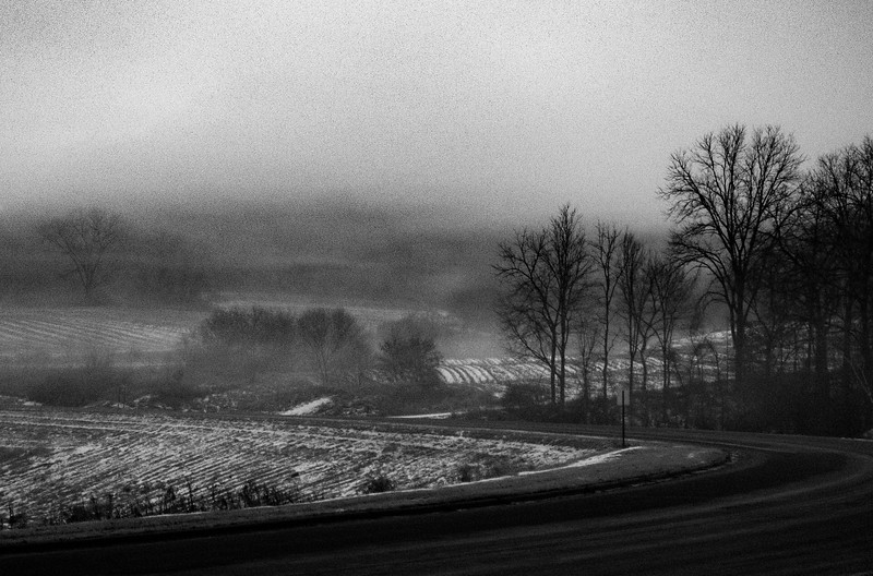 Foggy Frosty Morning.