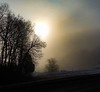 Foggy Frosty Morning.