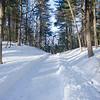 Saugus snow Katie 02