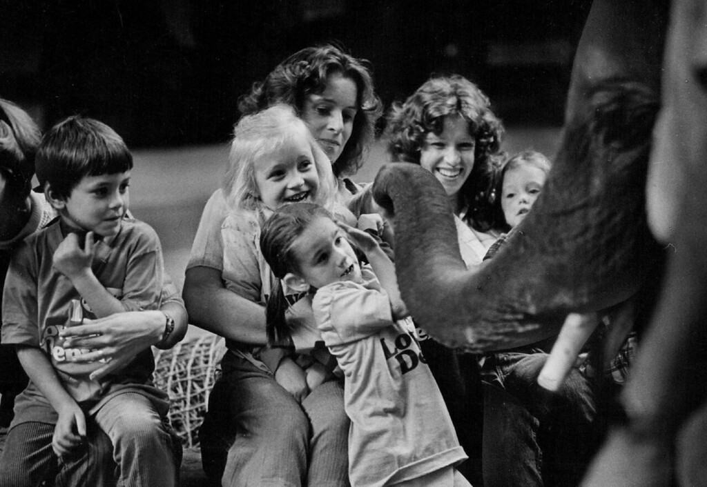 . OCT 10 1978 - Big Treat at the Circus. These children from Fletcher Miller School, 200 Kipling St., react to the nosy meanderings of Charlie the elephant, one of; the animals performing in the Ringling Bos. and Barnum & Bailey Circus at the Denver Coliseum this week. These partly deaf youngsters were part of a group of about 150 kids with visual and hearing handicaps who were given a chance to pet the circus animals before the afternoon performance Monday, as special guests of the circus and KHOW Radio The children, who also petted a llama and two ponies, watched the show from a special section of seats on the arena floor. Partly blind children heard descriptions over KHOW and hearing impaired were helped by sign language. (John Sunderland/The Denver Post)