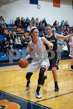 Sam Buckner for Shaw Media.<br /> Julie Galauner looks to pass the ball on the baseline on Tusday January 3, 2016.