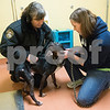 dnews_0103_Animal_Control_02