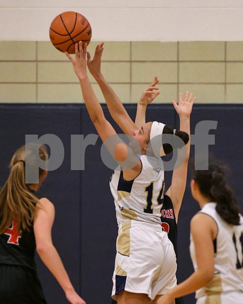 dc.sports.0110.ic hia girls basketball 09