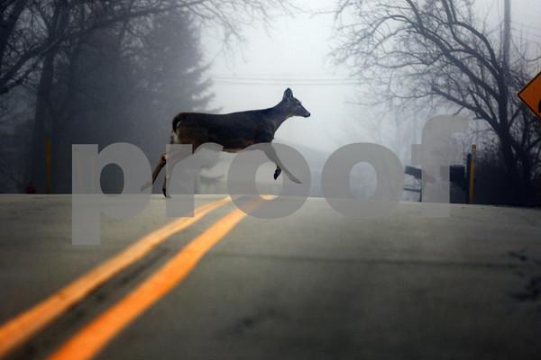 dnews_0110_Foggy_Weather_04