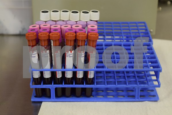 Vials of blood await testing at Heartland Blood Centers, 2428 Sycamore Road in DeKalb. Since donated blood is perishable, with red blood cells having a shelf life of 42 days and platelets five days, the need for blood donations is constant.