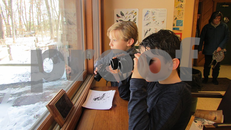 Greyson Robinson, 7, and Lucas Bachert, 7, both of Sycamore, watch birds Saturday at Winterfest in Genoa.