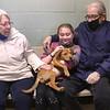 dc.0128.stolen puppy adopted06