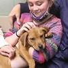 dc.0128.stolen puppy adopted07