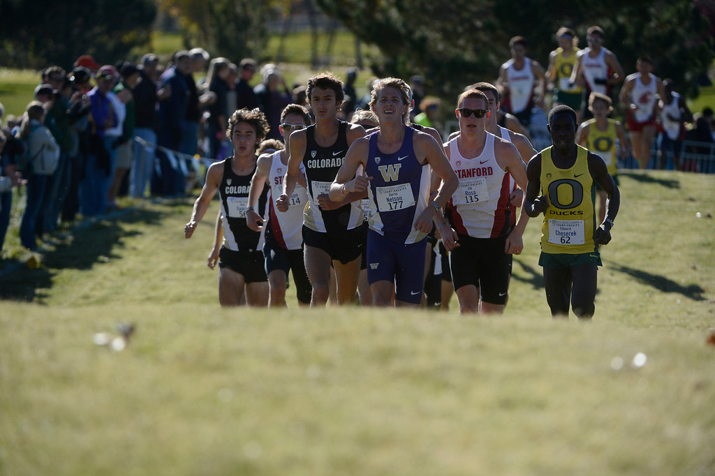 . LOUISVILLE, CO - NOVEMBER 02: Cross country runners head up hill on course at the Pac 12 Cross Country Championships at the Coal Creek Golf Course Saturday morning, November 02, 2013. Oregon runner, Edward Cheserek, right, went on to win the race. (Photo By Andy Cross/The Denver Post)