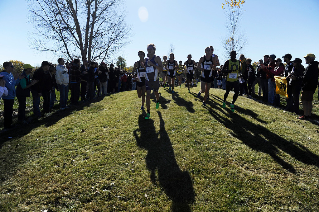 . LOUISVILLE, CO - NOVEMBER 02: Colorado University runners and others charge up a hill during the Pac 12 Cross Country Championships at the Coal Creek Golf Course Saturday morning, November 02, 2013. Oregon runner, Edward Cheserek, right, follows closely and eventually wins the race with a time of 24:36. Colorado went on to win the overall championship. (Photo By Andy Cross/The Denver Post)