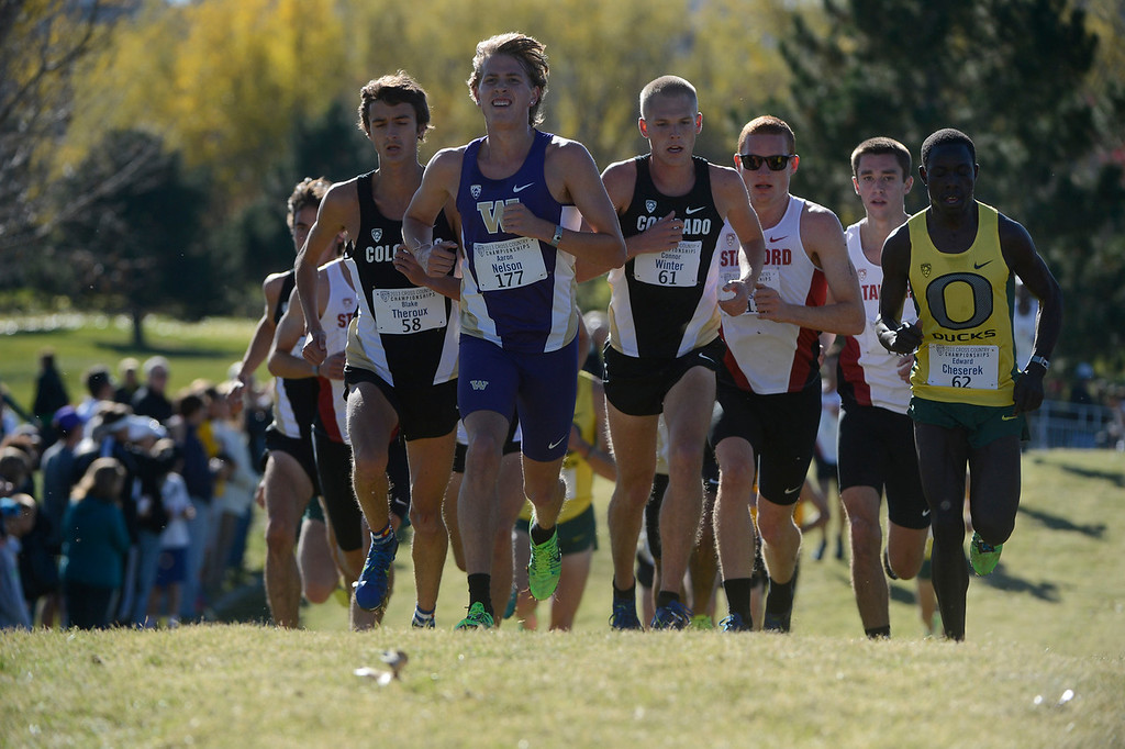 . LOUISVILLE, CO - NOVEMBER 02: Cross country runners, from left to right, Blake Theroux, #58, Colorado, Aaron Nelson, #177, Washington, Connor Winter, #61, Colorado, Jim Rosa, #115, (number not visible) Stanford, and Edward Cheserek, #62, Oregon, head up on course at the Pac 12 Cross Country Championships at the Coal Creek Golf Course Saturday morning, November 02, 2013. Cheserek went on to win the race, CU men\'s team won the overall. (Photo By Andy Cross/The Denver Post)