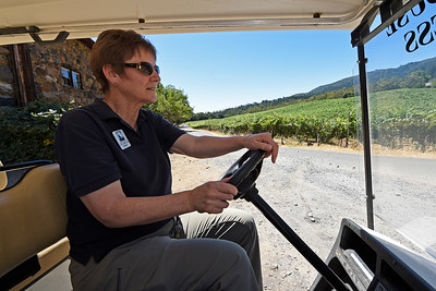 Director of Programs and volunteer management Susan St. Marie tours the grounds on a golf cart at Jack London State Historic Park in Glen Ellen, Calif., on Monday, June 27, 2016. (Jose Carlos Fajardo/Bay Area News Group)