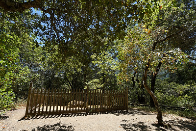 Located on a knoll north of the Wolf House is the grave of Jack London at Jack London State Historic Park in Glen Ellen, Calif., on Monday, June 27, 2016. Buried underneath a large volcanic rock are the remains of Jack London, his wife Charmian London and his step-sister Eliza Shepard. (Jose Carlos Fajardo/Bay Area News Group)