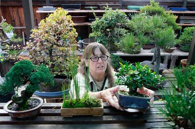 Bonsai Garden, Kathy Shaner