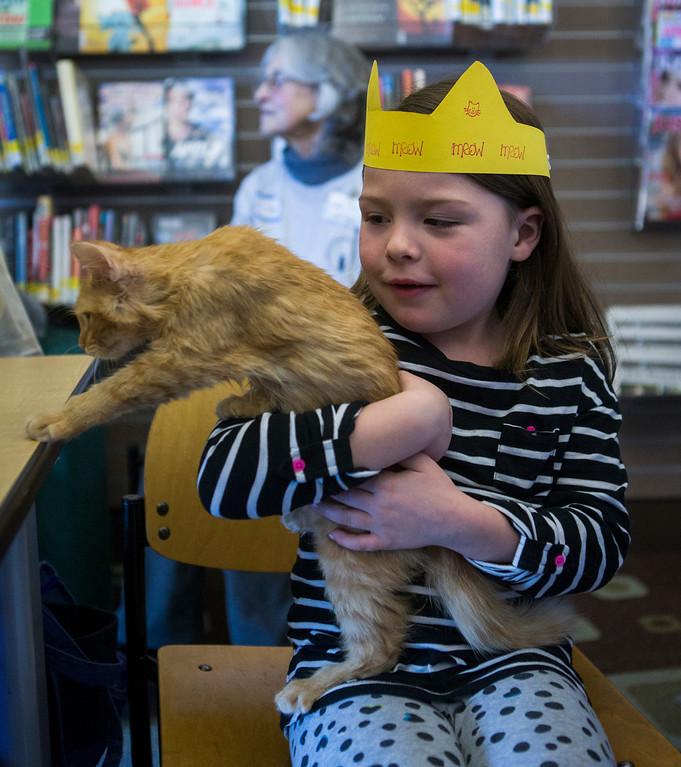 . Alex Lowmiller, 5, of Foster City, holds a kitten at the Homeless Cat Network\'s cat adoption fair.(John Green/Bay Area News Group)