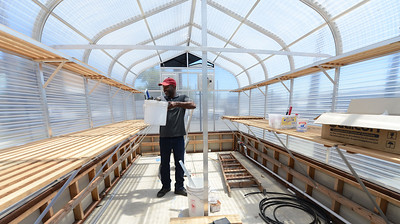 Executive Director Rodney Spencer moves items around in what will be the greenhouse at City Slicker Farms in Oakland, Calif., on Friday, June 24, 2016. This urban farm grows and sells their produce on site in a totally urban setting. (Dan Honda/Bay Area News Group)