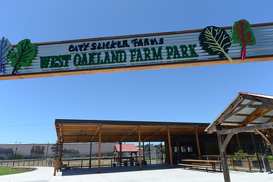 City Slicker Farms photographed in Oakland, Calif., on Friday, June 24, 2016. This urban farm grows and sells their produce on site in a totally urban area. (Dan Honda/Bay Area News Group)