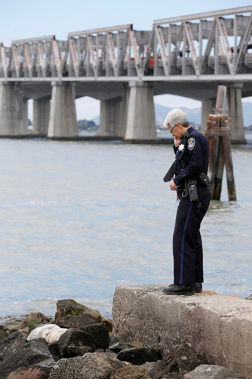 . Oakland Police Department spokesperson Johnna Watson fields calls at the scene where a headless and limbless decomposed torso, left, was found on the rocks along Burma Road in West Oakland, Calif., on Wednesday, May 25, 2016.  The body was discovered about noon on some rocks near the Bay Bridge by a man taking pictures while on his lunch break, police said. (Jane Tyska/Bay Area News Group)