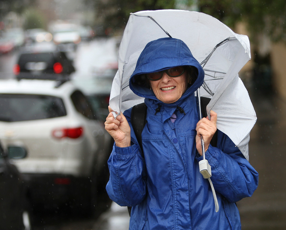 . Visiting from Florida, Janet Elmore pulls her umbrella around her head as the rain comes down in Los Gatos, Calif. on Friday, Feb. 28, 2014. (Jim Gensheimer/Bay Area News Group)