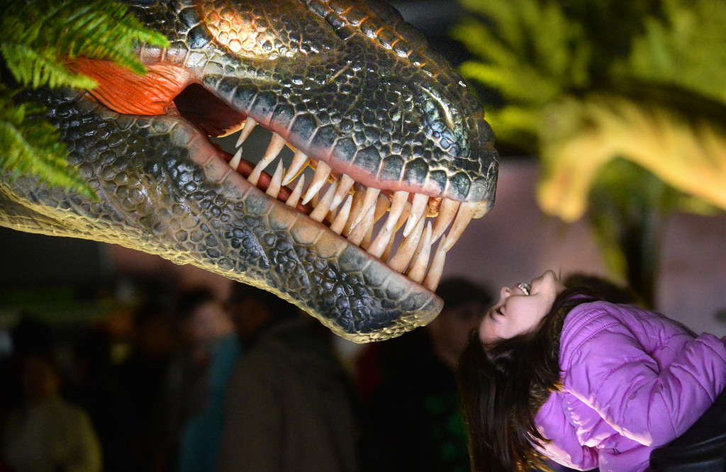 """. Monica Lopez, of Hercules, is held up to one of the animatronic dinosaurs by her father Erik Lopez, during the Jurassic Quest event held this weekend at the Alameda County Fairgrounds in Pleasanton, Calif., on Saturday, Feb. 8, 2014. The indoor exhibit features  life-size, realistic animatronic dinosaurs from the Jurassic, Triassic and Cretaceous periods. Visitors can interact with the dinosaurs and learn about them and even ride a few. There will be a T-Rex and Triceratops fossil digs where young paleontologists can uncover long hidden dinosaurs bones. Their is also a \""""Dino Bounce\"""" children\'s play area with several, towering, dinosaur theme inflatable mazes. (Doug Duran/Bay Area News Group)"""