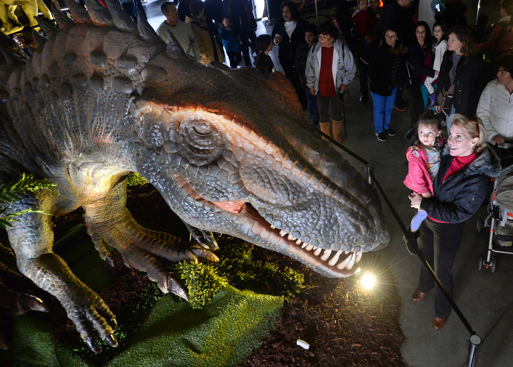 """. Linda Hoffman, of Danville, holds her granddaughter Ariana, of Walnut Creek, as they look at one of the animatronic dinosaurs at the Jurassic Quest event held this weekend at the Alameda County Fairgrounds in Pleasanton, Calif., on Saturday, Feb. 8, 2014. The indoor exhibit features  life-size, realistic animatronic dinosaurs from the Jurassic, Triassic and Cretaceous periods. Visitors can interact with the dinosaurs and learn about them and even ride a few. There will be a T-Rex and Triceratops fossil digs where young paleontologists can uncover long hidden dinosaurs bones. Their is also a \""""Dino Bounce\"""" children\'s play area with several, towering, dinosaur theme inflatable mazes. (Doug Duran/Bay Area News Group)"""
