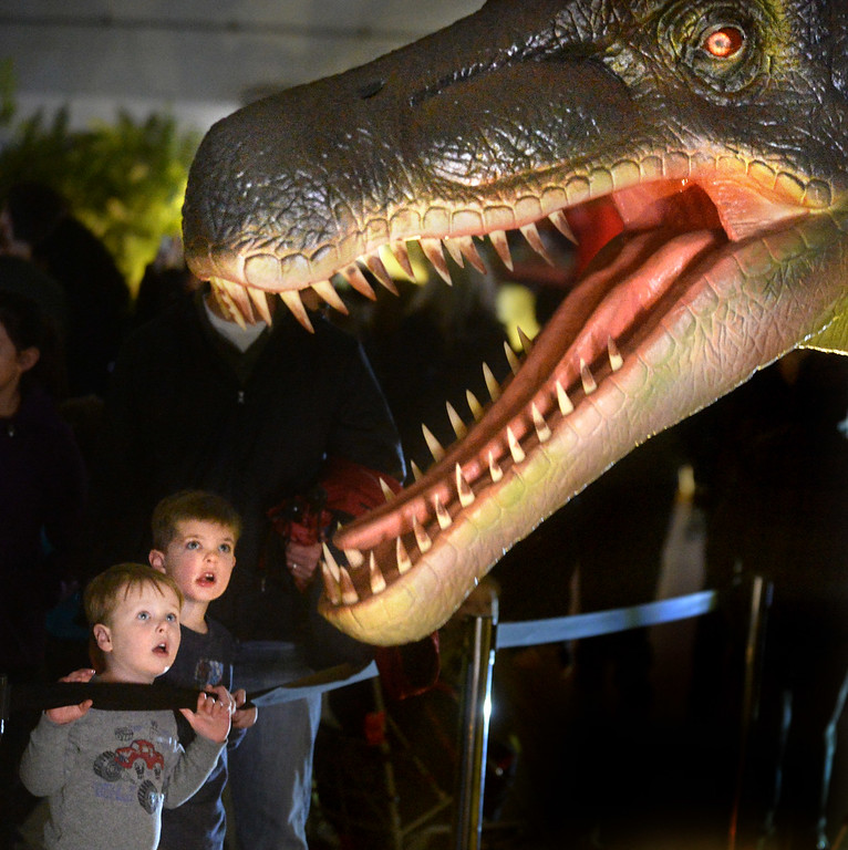 """. Joey Figueira, 4, left, and brother A.J. Figueira, 6, look at one of the animatronic dinosaurs at the Jurassic Quest event held this weekend at the Alameda County Fairgrounds in Pleasanton, Calif., on Saturday, Feb. 8, 2014. The indoor exhibit features  life-size, realistic animatronic dinosaurs from the Jurassic, Triassic and Cretaceous periods. Visitors can interact with the dinosaurs and learn about them and even ride a few. There will be a T-Rex and Triceratops fossil digs where young paleontologists can uncover long hidden dinosaurs bones. Their is also a \""""Dino Bounce\"""" children\'s play area with several, towering, dinosaur theme inflatable mazes. (Doug Duran/Bay Area News Group)"""