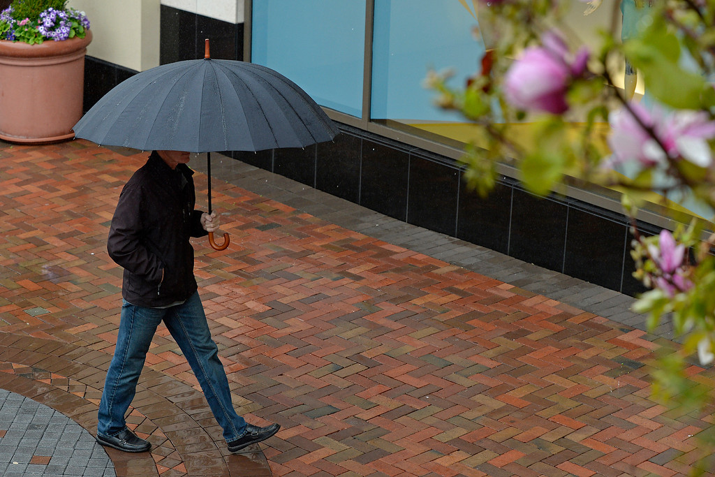 . A man shields himself from the rain as he walks at Broadway Plaza in Walnut Creek, Calif., on Saturday, Feb. 8, 2014. (Jose Carlos Fajardo/Bay Area News Group)