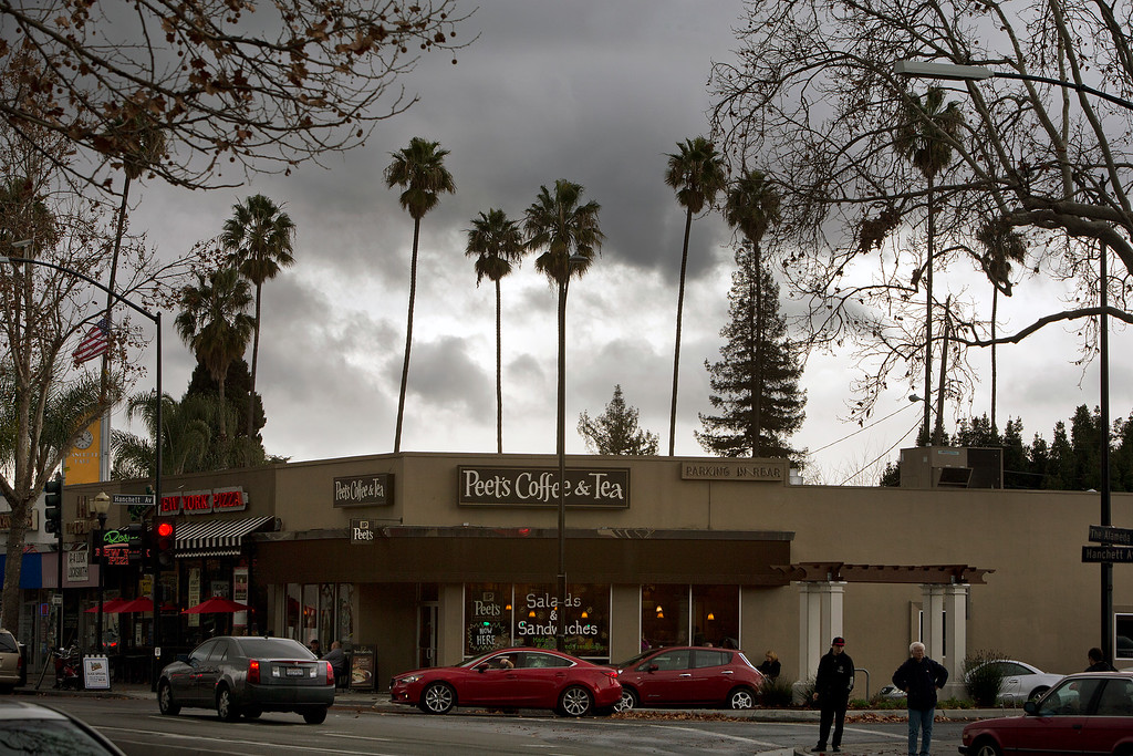 . Behind the palm trees are cloudy skies along The Alameda in downtown San Jose, Calif., on Saturday., Feb.8, 2014.   (LiPo Ching/Bay Area News Group)